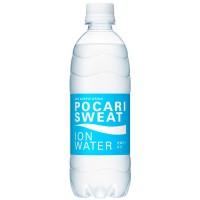 bottle_pocari ionwater