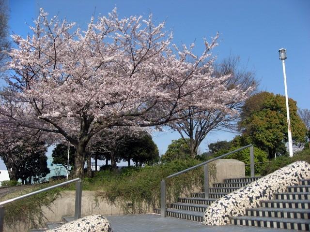 800__yamashitapark20090408