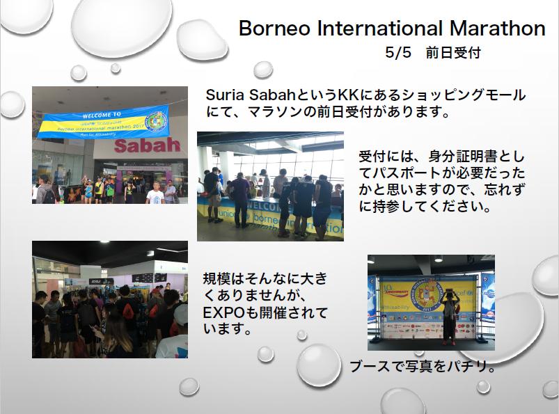 Borneo International 1
